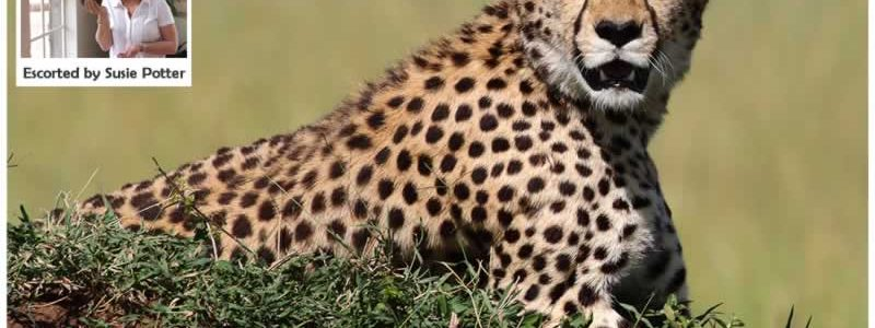Explore Southern Africa Group Tour : 10-22 February 2020